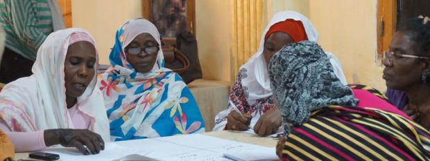 Stichting Vrouwenorganisatie Nederland-Darfur